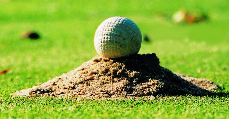 Những sự thật thú vị về bộ môn golf